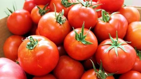 tomate para la ereccion masculina